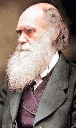 Darwin Reconsidered
